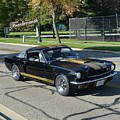 1966 Shelby Gt350h Stojan by Mobile Event Photo Car Show Photography