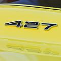 1967 Chevrolet Corvette Sport Coupe Emblem by Jill Reger