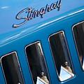 1969 Chevrolet Corvette Stingray Emblem by Jill Reger