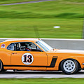 1970 Ford Mustang by Randy Scherkenbach