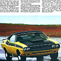 1971 Dodge Challenger T/a by Digital Repro Depot