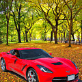 1974 Red Chevrolet Corvette In A Park In Black And White 3466.02 by M K Miller