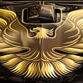 1979 Pontiac Trans Am  by Gordon Dean II