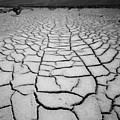 1a6832 Bw Mud Cracks In Death Valley by Ed Cooper Photography