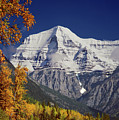 1m2440 Mt. Robson In Fall by Ed Cooper Photography