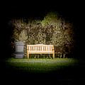 A Trash Can And Wooden Benches In A Small Grassy Area by Ashish Agarwal