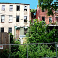2 Abandoned Row Houses by Walter Neal