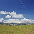Alpine Meadow by Cosmin-Constantin Sava