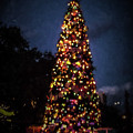 An Epcot Christmas Tree by Tommy Anderson