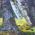 Ancient Totems Of Haida Gwai by Lisa Dunn