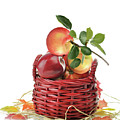 Apples In A Basket  by Svetlana Foote