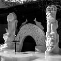 Arch by Angus Hooper Iii