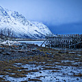 Arctic Reflections by Mark Llewellyn