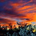 Arizona Sky by L L Stewart