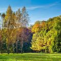 Autumn Colors Of Nature by Serhii Simonov