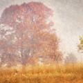 Autumn Mist by Leda Robertson