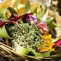 Bali Offerings by Jijo George