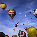 Balloon Fiesta by Angel Ciesniarska