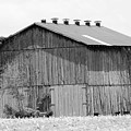Barn In Kentucky No 71 by Dwight Cook