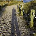 Beach Entry by Fran Gallogly