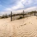 Beach Life by Matthew Trudeau