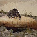 Bear And Canoe by MotionAge Designs