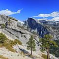 Beauty Of Yosemite by Chon Kit Leong