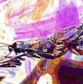 Black Butterflies Butterfly  by PixBreak Art