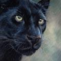 Black Panther by Sarah Stribbling
