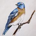 Bluebird Guardian by Kathrine McMurray