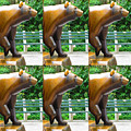 Bronze Statue Sculpture Of Bear Clapping Fineart Photography From Newyork Museum Usa Fineartamerica by Navin Joshi
