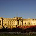 Buckingham Palace. by Nigel Dudson