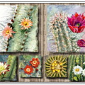Cactus Collage by Marilyn Smith