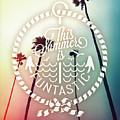 California Palms I by Chris Andruskiewicz