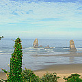 Cannon Beach, Oregon by Panoramic Images