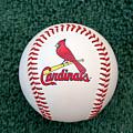 Cardinals by Steve Stuller