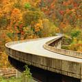 Charles C. Rogers Memorial Bridge by Ola Allen