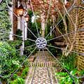 Charleston Gated Garden by Dawna Moore Photography