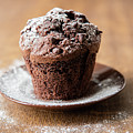 Chocolate Muffin With Powdered Sugar by Piotr Marcinski