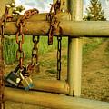 Padlocks And Chains by Christina Wedow