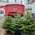 Christmas Time by Viktor Pravdica