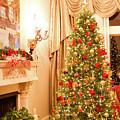 Christmas Tree by Maria Daskalis