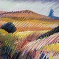 Coastal Hills by Donald Maier