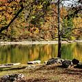 Colors Of Fall by Tammy Hyatt