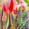 2 Corinthians 3 6 by Michelle Greene Wheeler