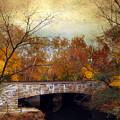 Country Bridge by Jessica Jenney