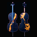 Custom Gliga Cello by Dino Muradian