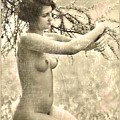 Digital Ode To Vintage Nude By Mb by Mary Bassett