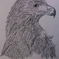Eagle by Sherri Gill