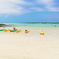 El Garrapatero Beach On Santa Cruz Island In Galapagos. by Marek Poplawski